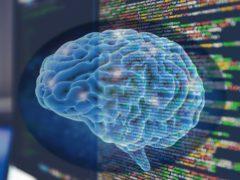 Internet e i cervelli diversi: la memoria